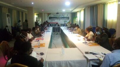 Togo: structurer l'économie en développant les Pme